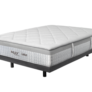 MLILY Memory Foam Lotus Mattress